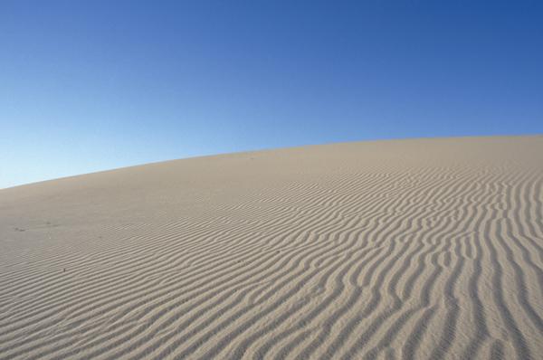 predicant en el desert : res passa «perquè sí»