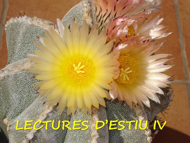 LECTURES D'ESTIU IV