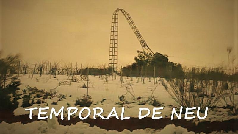 TEMPORAL DE NEU