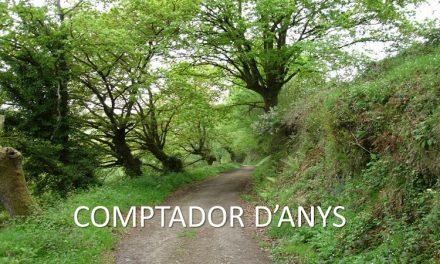 COMPTADOR D'ANYS