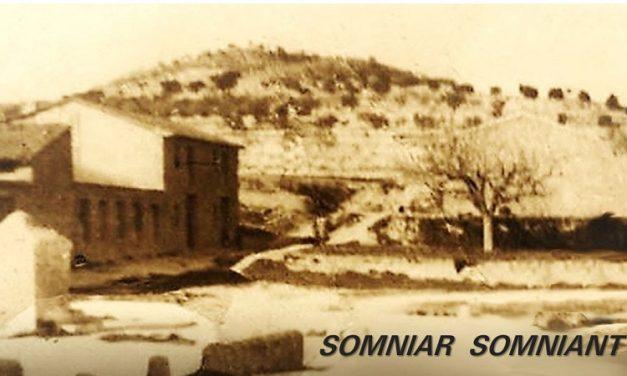 SOMNIAR SOMNIANT