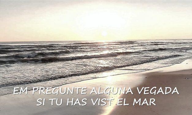EM PREGUNTE ALGUNA VEGADA SI TU HAS VIST EL MAR