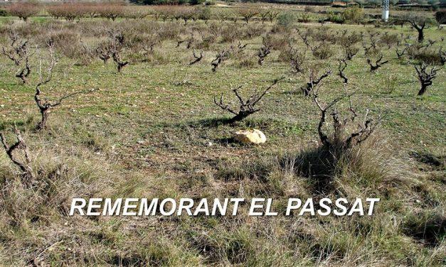 REMEMORANT EL PASSAT