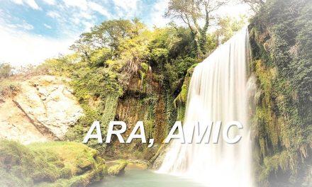 ARA,AMIC